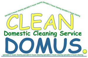 Clean Domus cleaning service Waterloo Inner Sydney Preview