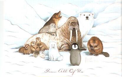 Walrus Beaver Penguin Seal Otter Embossed Christmas Cards Box of 16^