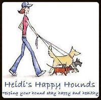 Heidi's Happy Hounds is looking for a part time dog walker