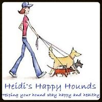 Heidi's Happy Hounds - Dog Walking Services Available