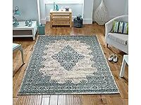 Royal Traditional Beige Duck Egg Blue Antique Look Home Floor Rug 160x230cm