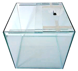 Fish tank cube with lid