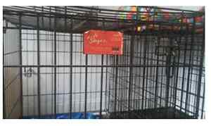 Cage chien large