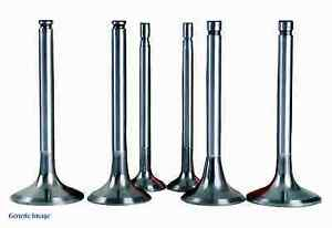 Used engine valves for home projects