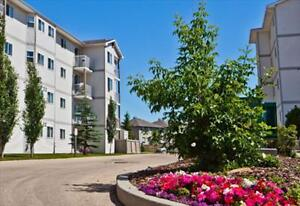 FREE Promo, Beautiful Suites, amazing location & neigbourhood Edmonton Edmonton Area image 6