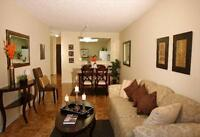 Queen and Dixie: 2, 4, 6 and 8 Silver Maple Court, 2BR