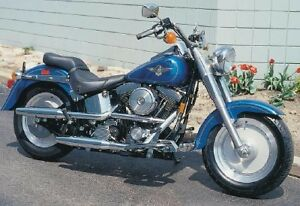 looking for EVO Softail