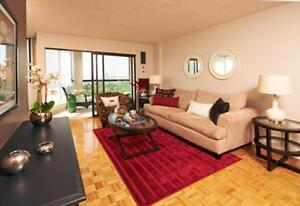Bright,Modern, Renovated in the Heart of Brampton - convenient!