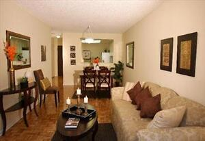 Bright, Modern, Renovated, Spacious - in the Heart of Brampton