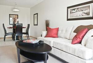 FREE Promo, Beautiful Suites, amazing location & neigbourhood