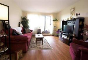 Great 2 bedroom apartment for rent Kingston Kingston Area image 1