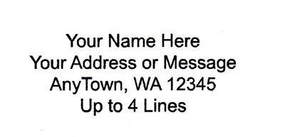 30 Personalized Returnmailing Address Labels 1 X 2.625 - Free Usa Shipping