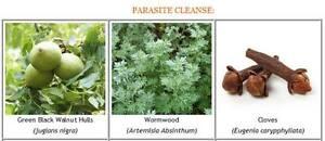 Parasite/Worm Cleanse Pack ~ Black Walnut Hull Tincture, Wormwood, Clove Capsule