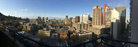 FULLY FURNISHED AND BELOW MARKET 1 BEDROOM WITH SUPERB VIEW