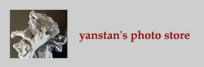 yanstan_collectibles