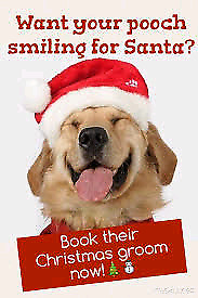 Pet Grooming. Does your pet need a spa day before Christmas?