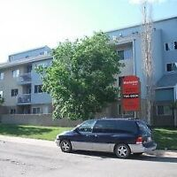Now Available 2 Bedroom Apt With Insuite Laundry!!