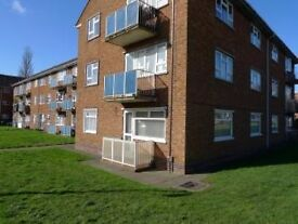 Beautiful Double Room offered in a ground floor flat