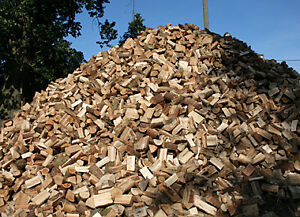 PREMIUM DRY FIREWOOD FACECORD OR BUSHCORD