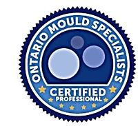 Indoor Air Quality and Mould / Mold Remediation