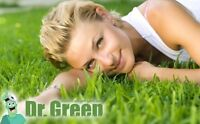 DR. GREEN LAWN CARE SERVICES - WEED FREE LAWN GUARANTEED!!
