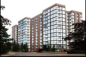1+1 Full of Natural Light Unit for Sale! Highly Desired Area!