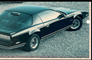 1986 Pontiac Firebird Coupe (2 door) - new price - $500.00
