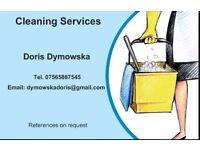 I offer regular cleaning services
