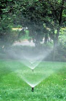 IRRIGATION BLOWOUT/ SNOW REMOVAL