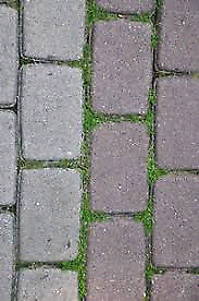 WANTED: paving stones or blocks  3000sqft will remove ourselves