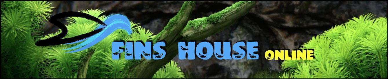 FinsHouse Online