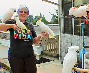 Bird Boarding - Budgies to Macaws - 3 Locations Vancouver Island