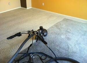 Professional carpet cleaning Edmonton Edmonton Area image 3