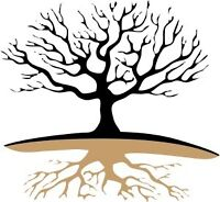 Tree removal,stump removal,storm damage cleanup