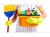 Cleaning/Laundry service ( pick up drop off available)