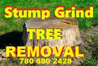 * Tree Removal Stump Grinding ....Landscaping 780 880 2428