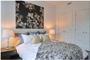 Beautiful brand new Condo for RENT in Little Italy