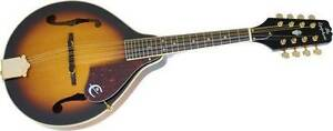 Beautiful Mandolin - rarely used - includes hard case in ex cond
