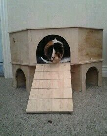 2 storey corner play tunnel shelter for guinea pig small for 2 story guinea pig cages for sale