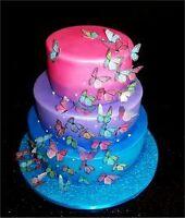 airbrush dessin aérographe sur gâteau, ongles vêtements manucure