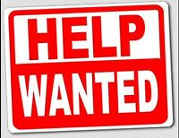 Wanted...............Store Sales Help