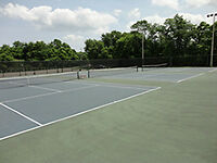 Want to Play Tennis!