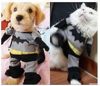 Hot Pet Apparel Batman Soft Dress Clothes For Dog Cat Dress Up Many Pets size-S on Rummage