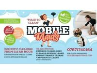 MOBILE MAIDS - DOMESTIC CLEANING SERVICE