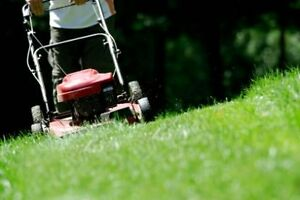 Clean Cuts Lawn Mowing & Landscaping Services