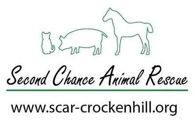 Second Chance Animal Rescue - Crockenhill