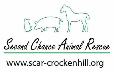 Second Chance Animal Rescue - Crockenhill