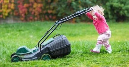 Law mowing - Licenced n qualified Landscaper