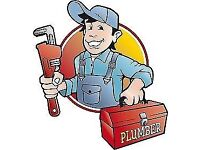 The leak finder, Reliable local plumber