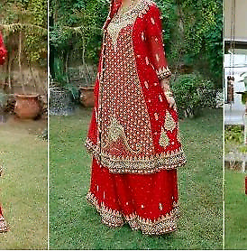 Pakistani/Indian dress (lahanga)